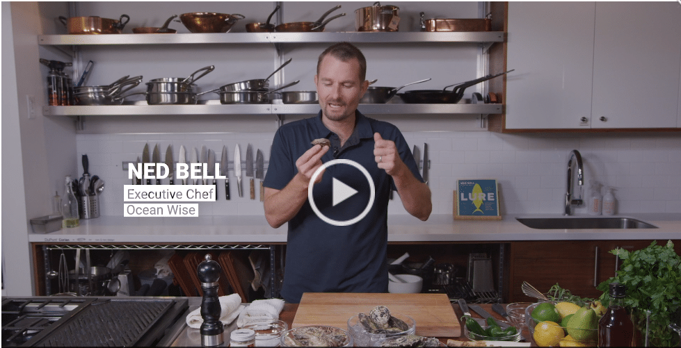 How to Shuck a Raw BC Oyster
