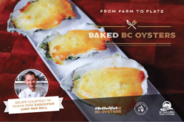 baked-bc-oysters-recipe